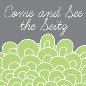 www.sarahannseitz.etsy.com